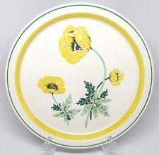 "Arklow - Shannon - Aran Stone - S'Wonderful - 10.5"" Dinner Plate - Ireland - ""P"""