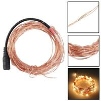 10M/33FT DC 12V 100LED Copper Wire Xmas Wedding Party String Fairy Light Hot GA
