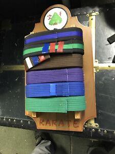 6 Level Martial Arts Belt Display Wall Rack  Karate Shorei-Goju-Ryu With Belts