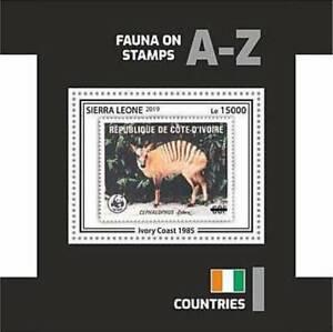 Sierra Leone - 2019 Stamp on Stamp WWF - Stamp Souvenir Sheet - SRL191002b1
