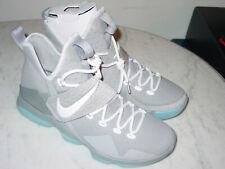 """2016 Nike Lebron 14 """"MAG McFly""""Matte Silver/White/Glow Shoes! Size 10 NIB!"""
