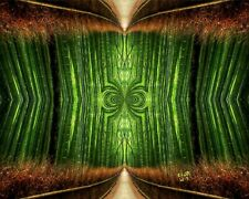 Emerald Path I by Bonnie Vent Fine ArtPrint 16x20 wall art in green and brown