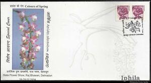 Aerides Odorantum Orchid special cv Orchids India Flora Blumen Orchidées Flowers