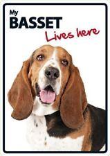 Basset Hound Lives Here A5 Plastic Sign