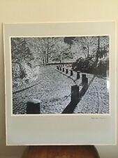 Mid Century Landscape Brick Road Black White Tone Line Process Photo Rick Warner