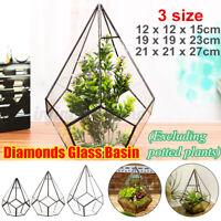 Geometric Glass Terrarium Box Succulent Flower Pot Plant Display Container Decor