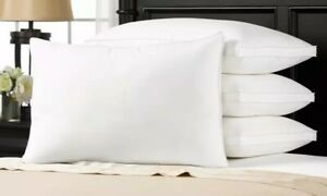 Ella Jayne Hotel Collection King Size Pillow  20 X 35""