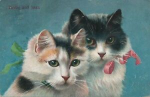 Two Cats Darby and Joan - 1909