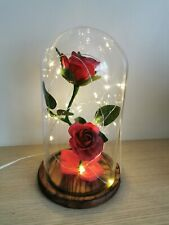 Enchanted Rose Light USB