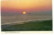 Sunrise over Ocean at Myrtle Beach with Gull Postcard