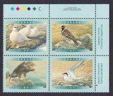 GOLDEN EAGLE, ARCTIC TERN = BIRDS = Canada 2000 #1889a MNH UR PLATE Block of 4