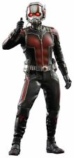 Hot Toys 1/6 Marvel Ant-man MMS308 Scott Lang Masterpiece Action Figure