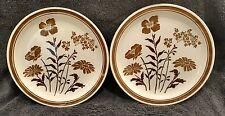 "2 EUC Jamestown China Ironstone Sunny Brown Flowers Dinner Plates 10 1/4""  USA"