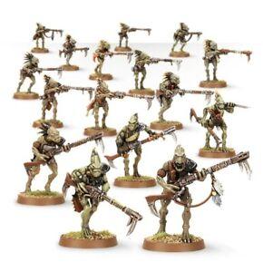 Warhammer 40k Tau Empire Kroot Jagdtrupp