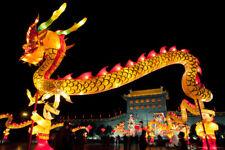 Dragon Lanterns Chinese Lantern Festival Shaanxi Province China Photo Art Print