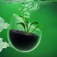 Aquarium Fish Tank Glass Live Plant Cup Pot Crystal Red Shrimp Holder Aquatic 34
