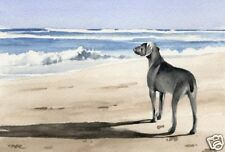 WEIMARANER Painting DOG ART 11 X 14 LARGE Print Signed DJR
