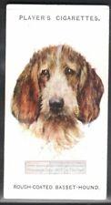 Rough Coated Basset Hound Dog 75+ Y/O Ad Trade Card