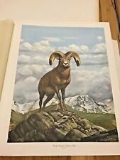 Rocky Mountain Bighorn Sheep Limited Edition Signed Print by Ray Harm 24.5 x 19