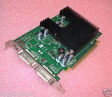 SCHEDA GRAFICA  PCI EXPRESS nVidiaGeForce@_256 MB_GF 7300 LE DVI-DUAL TVO