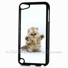 ( For iPod Touch 6 ) Back Case Cover AJ10050 Cute Pussy Cat