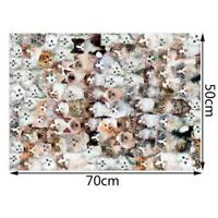 Lovely Cats 1000 Pieces Puzzles Attractive Adults Children Jigsaw Puzzle U1N3
