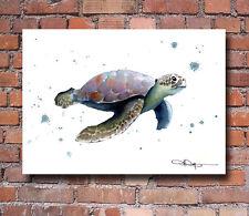 Sea Turtle 2 Watercolor Painting Art Print by Artist DJ Rogers