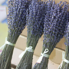 1 Bunch Natural Getrocknete Blume Lavendel Floral Plant Blumensträuße Home Decor