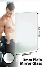 Large Wall Mirror 6FT X 4FT 183CM X 122CM GLASS GYM OR DANCE STUDIO 3MM THICK