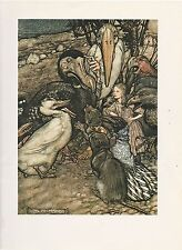 """1975 full Color Plate """"But Who Has Won, Alice in Wonderland"""" by Arthur Rackham"""