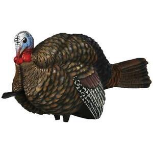 Avian X Turkey Decoy 1/2 Strut Jake
