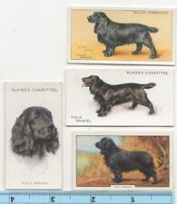 Field Spaniel Dog Pet Canine 4 Different Vintage Ad Trade Cards #4