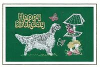 English Setter  Birthday Card  Embroidered by Dogmania