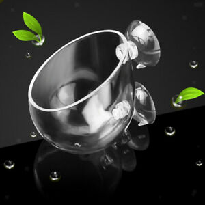 10 Piece Aquarium Fish Tank Crystal Glass Plant Cup Pot with Suction Cup