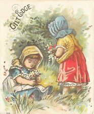Gilt Edge Victorian Trade Card Girls Collecting Flowers