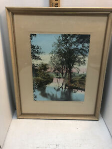 """Color Ph Print by Wallace Nutting """"In Tender Leaf"""" signed and Nutting copyright"""