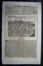 "JAGD, Hetzjagd. Originaler Kupferstich von 1687 aus ""Georgica curiosa"""