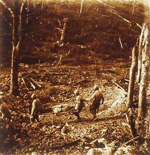 FRANCE Transport blessé Guerre 14-18 WWI Photo Stereo Plaque de verre
