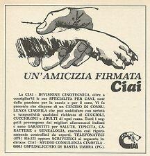 W3981 Un'amicizia firmata CIAI - Ospedalicchio di Bastia Umbra - Pubblicità 1971
