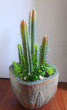 Set of 9 Artificial Succulents Plants Flocking Coral columns Flocking Grass