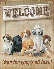 Welcome Now The Gangs All Here Tin Sign ~ Mixed Breed Puppy Dogs