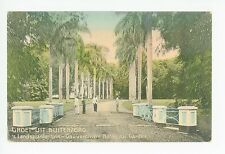 Buitenzorg BOGOR Indonesia—Dutch West Indies JAVA Botanical Garden STAMP 1910s