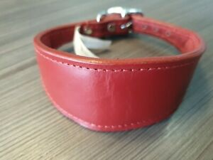LEATHER WHIPPET DOG COLLAR SUEDE BACKING PADDED 12-14 INCH SAMPLE 27