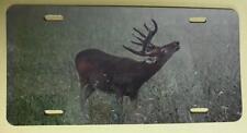 Standing Buck in Field, Color Metal License Plate, Deer Hunter Gift, Car Tag