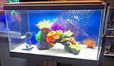 More details for ciano aqua 60 2ft led tropical glass aquarium - inc filter lights heater ~  58l