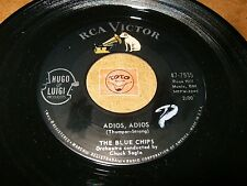 THE BLUE CHIPS - ADIOS ADIOS - LET IT RIDE  / LISTEN - VOCAL GROUP  POPCORN