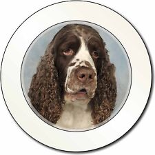 Springer Spaniel Dogs Car//Van Permit Holder//Tax Disc Gift AD-SS12T