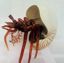 Big Hermit Crab Nautilus Sea Shall Murano Blown Glass Figurine Decor Collect