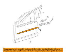 Pontiac GM OEM 03-07 Vibe Front Door-Center Molding Right 88974150