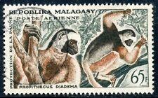 STAMP / TIMBRE DE MADAGASCAR N°84 OBLITERE SINGE